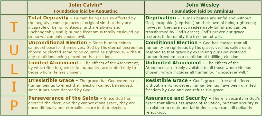 the salvation debate calvinism and arminianism Question: what is arminianism, and is it biblical answer: arminianism is a system of belief that attempts to explain the relationship between god's sovereignty and mankind's free will, especially in relation to salvation arminianism is named after jacobus arminius (1560—1609), a dutch theologian while calvinism emphasizes the sovereignty of god, arminianism emphasizes the.