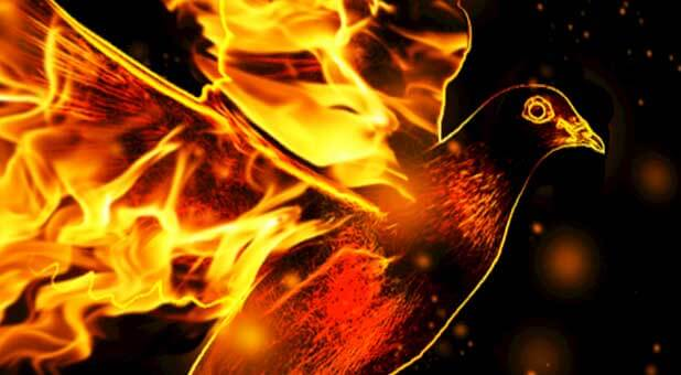 Fire Of The Holy Spirit Judgment Or Anointing Eljasib