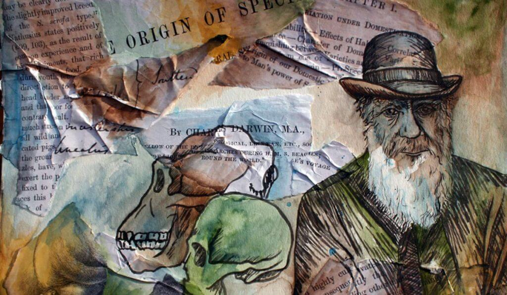 darwin essays reviews Charles darwin founded evolutionary biology, which was a new branch of life science four of charles darwins theories are extremely important the first one is the non-constancy of species.